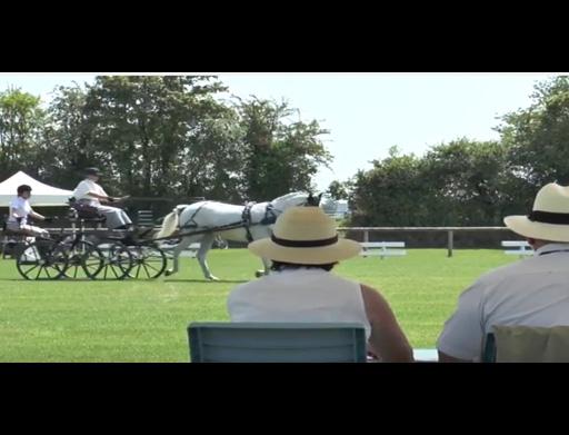Saint-Lô : site d'accueil des épreuves de démonstration de Horse Ball